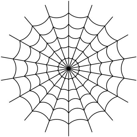 spider web: cobweb