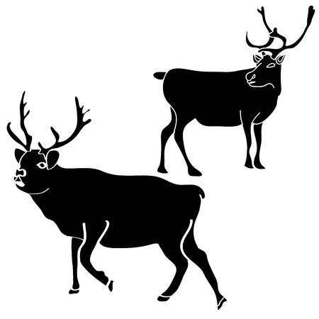 reindeer silhouette Stock Vector - 19279781