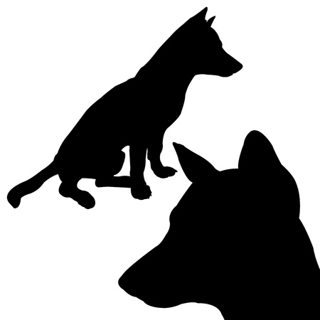 Dog situate  Vector