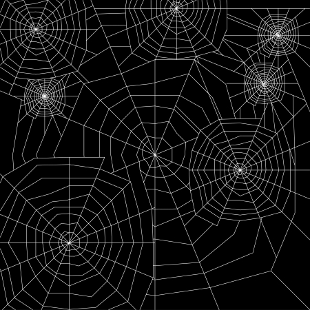 spinnennetz: Spinnennetz Silhouette