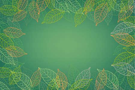 leaves frame background