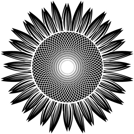 sunflower silhouette vector Vector