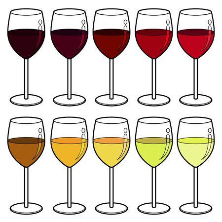wine colour: wine colour vector