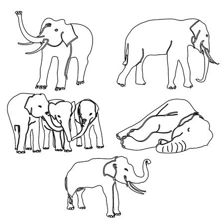 elephant activities vector Vector