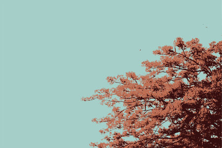 The Flame Trees vector