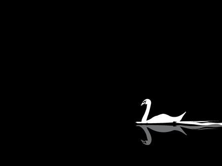 swan vector Vector