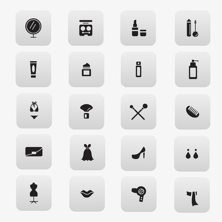 cosmetics and accessories icon Vector