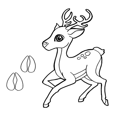 caribou: paw print with Deer Coloring Page vector