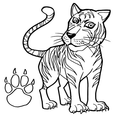 tiger page: tiger with paw print Coloring Page vector