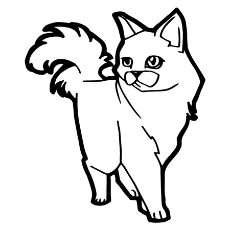 cartoon Cat Coloring Page for kid isolated on white Stock Illustratie