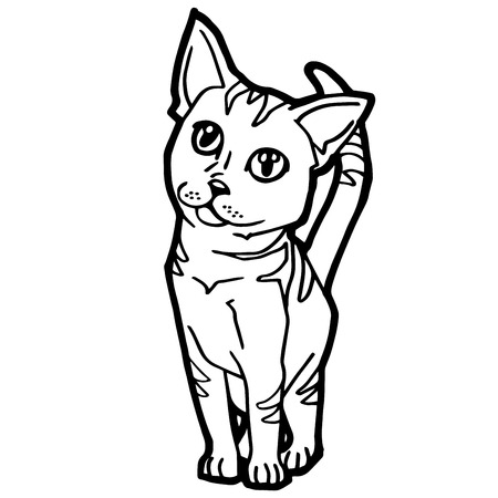 wiskers: cartoon Cat Coloring Page for kid isolated on white Illustration