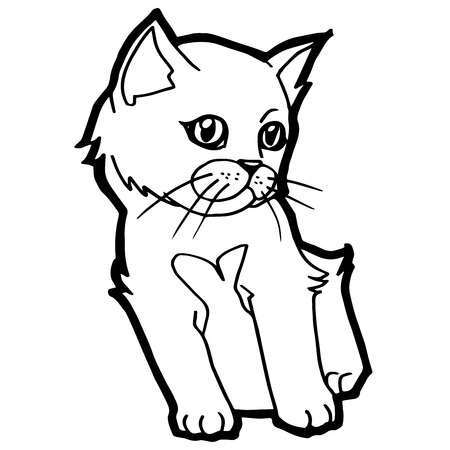 wiskers: Cat Coloring Page vector