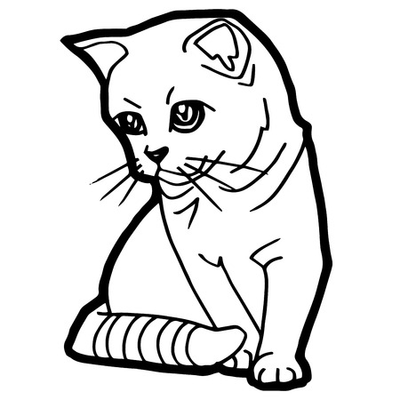 mjau: Cat Coloring Page vector