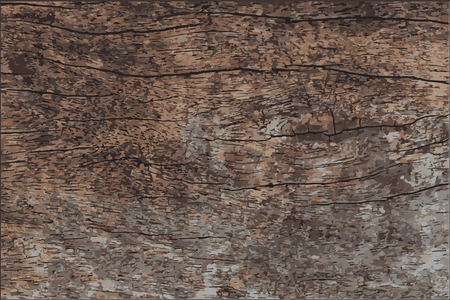 aged wood: wood texture vector