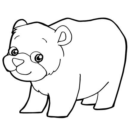 Cartoon Cute Bear Coloring Page Vector Illustration Vector