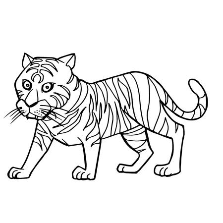 Ilustración de dibujos animados lindo tigre para colorear página vectorial Vectores