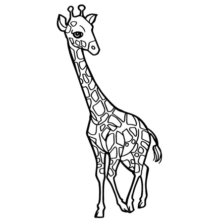 A cartoon cute giraffe coloring page vector illustration. Ilustração
