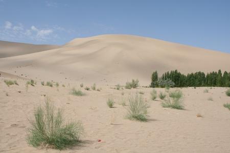 Sand dune, Gobi dessert, China