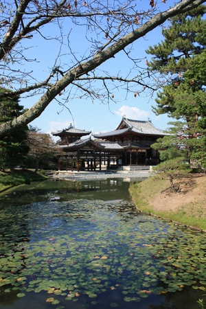 Byodoin temple in Uji, near Kyoto in Japan, a unesco world heritage site Stock Photo - 16245353