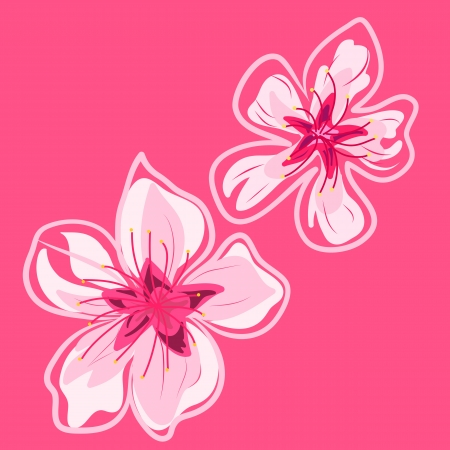 spring cherry blossoms vector hand drawing pattern