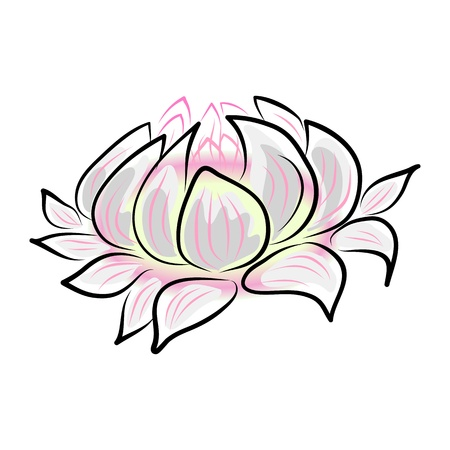 nymphaea: hand drawing water lily, lotus, flower.