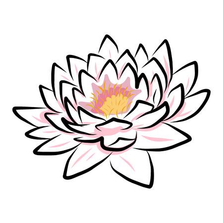 손 그리기 수련, 연꽃, 꽃. 벡터 EPS10 일러스트