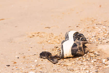 old shoes: Old shoes on the beach