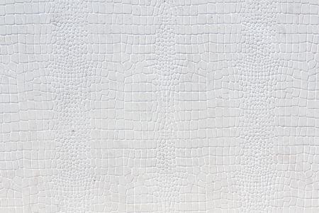 white leather texture: Crocodile skin white leather texture background