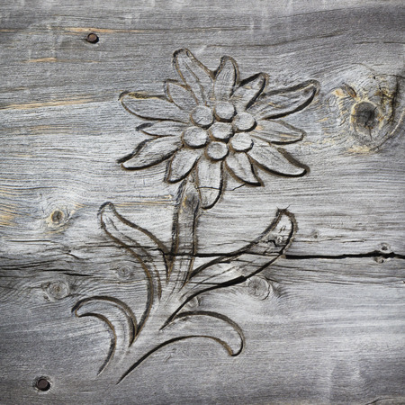 wooden board with edelweiss shaped cut out