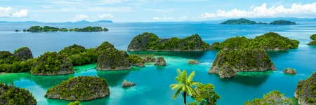 tropical island: View on Fam Island in Raja Ampat Indonesia