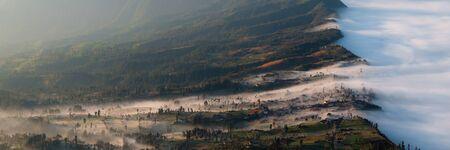 murk: The misty fog entering slowly the field