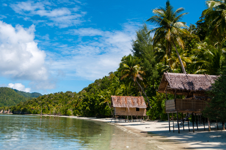 papua new guinea: Nipa bamboo Huts at the White Sand beach with palm trees in Raja Ampat, Papua New Guinea, Indonesia