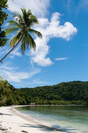 new guinea: Il tropicale, spiaggia bianca di Raja Ampat in Papua Nuova Guinea, Indonesia