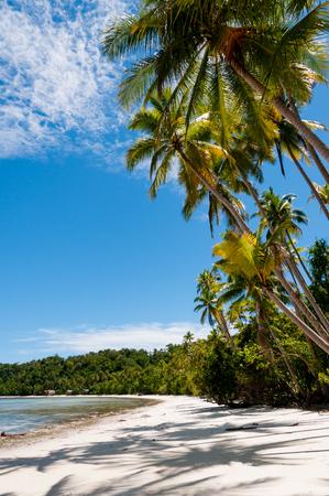 Nuova Guinea: Il tropicale, spiaggia bianca di Raja Ampat in Papua Nuova Guinea, Indonesia