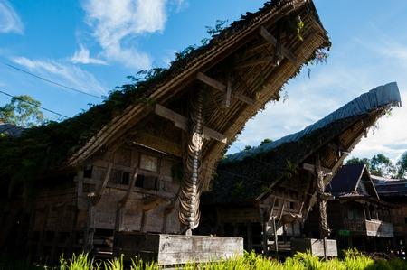 toraja: Traditional House front in Tana Toraja Decorated With Carabao buffalo Horns, Sulawesi, Indonesia Stock Photo