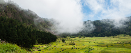 humid: Green humid farm field with clouds in canyon of volcano Cape verde off the coast of africa