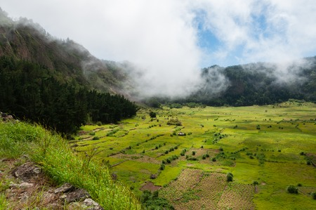 Green humid farm field with clouds in canyon of volcano Cape verde off the coast of africa