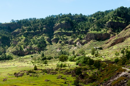 humid: Green humid farm field in canyon of volcano Cape verde off the coast of africa Stock Photo