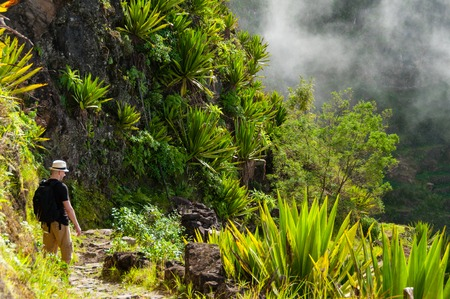 White man with black shirt,hat and backpack standing between plants at a foggy mist cliff on mountain in cape verde island