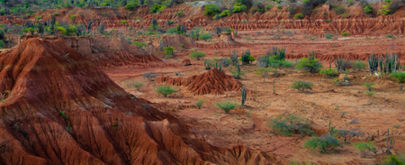 parch: Big red sand stone hill in dry hot tatacoa desert with plants, huila, Colombia