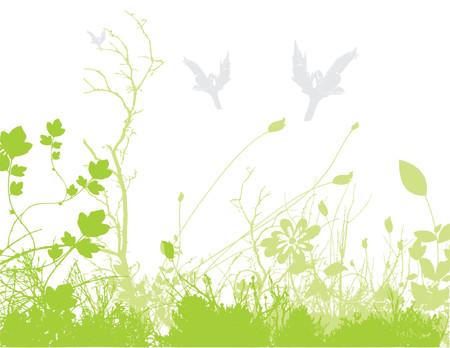golden daisy: springtime Illustration