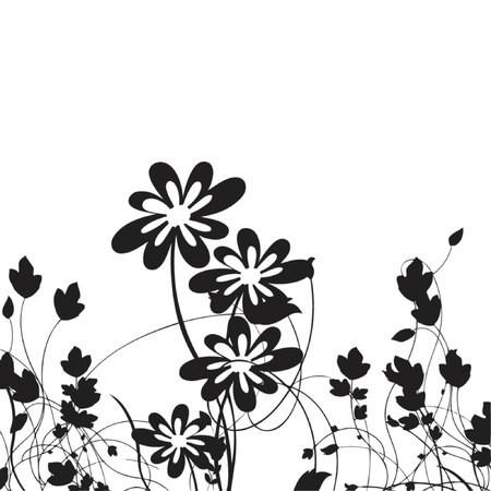 scroll, vectoe illustration Illustration