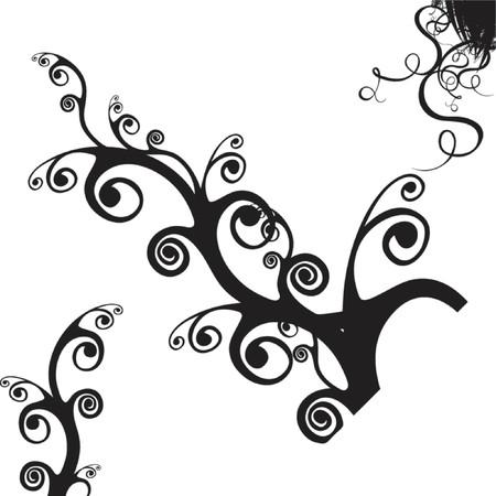 scroll decor vector illustration Illustration
