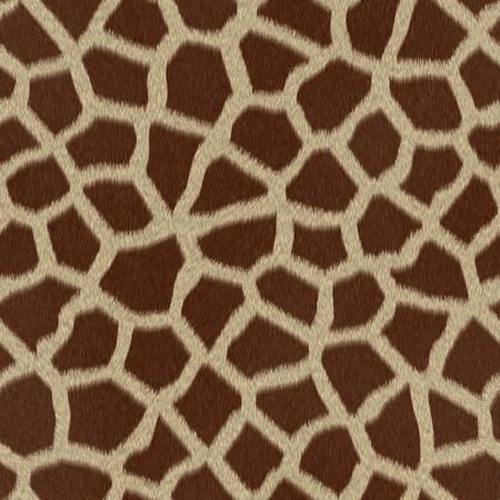 Piel de la jirafa piel de fondo o textura Foto de archivo - 15821106