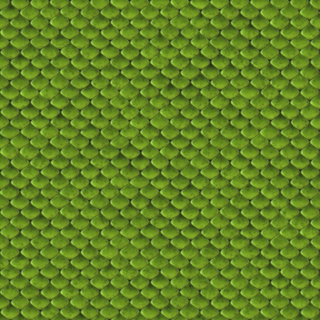 Green snake skin seamless background or texture photo