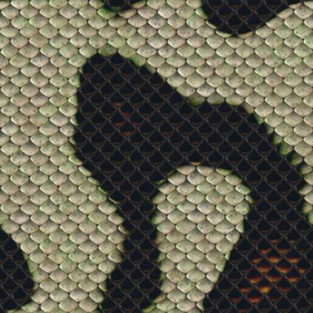 Snake skin dark and white seamless background or texture photo