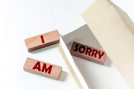 wooden blocks with text IM Sorry in a box on a white background