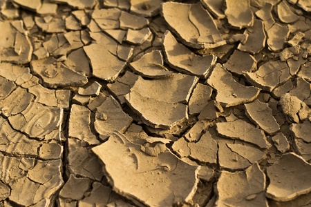 desertification: Dry land background