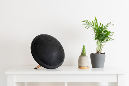Minimal composition, scandinavian nordic hygge style, home interior - portable speaker, cactus, evergreen plant, white shelf