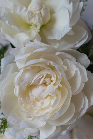 Closeup Bouquet of beautiful white peonies, wedding flowers